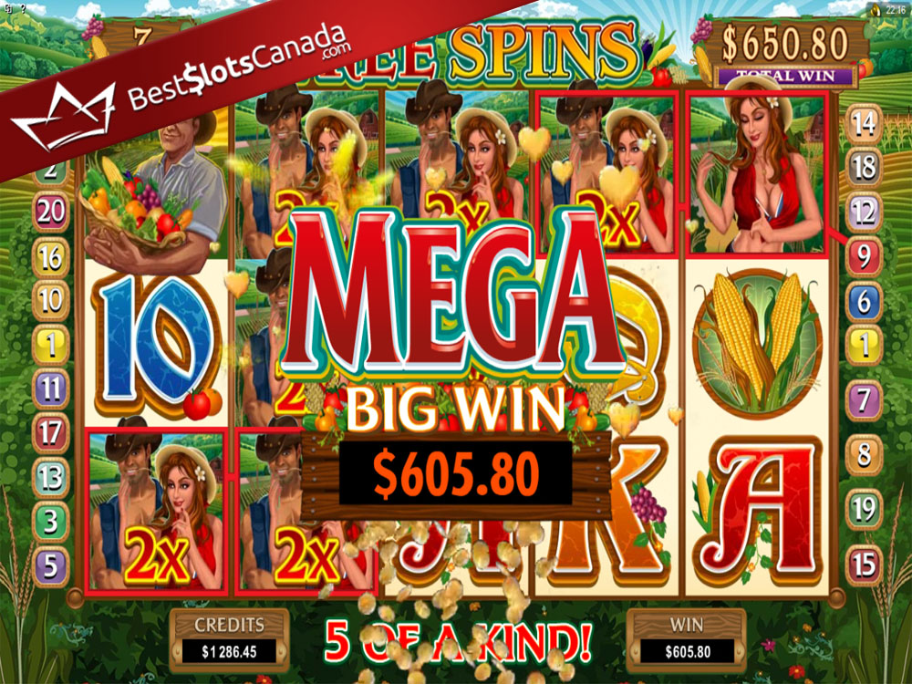 Sweet Harvest Slot Bonus Mega Big Win